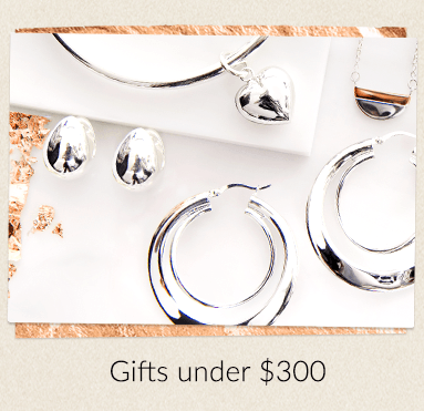 Ninas Christmas Gift Guide - Gifts Under $300