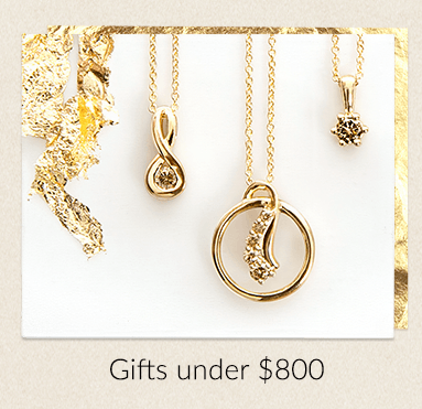 Ninas Christmas Gift Guide - Gifts Under $800