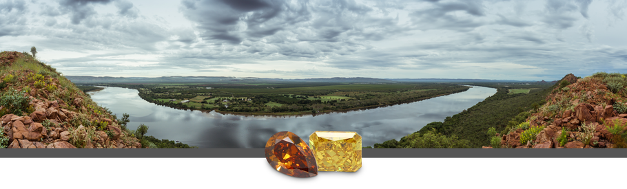 What Happens when the Argyle Diamond Mine Shuts Down?